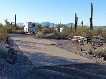 Pull-thru campsite with picnic table and grill, cactus and desert vegetation surround site.  Site 046