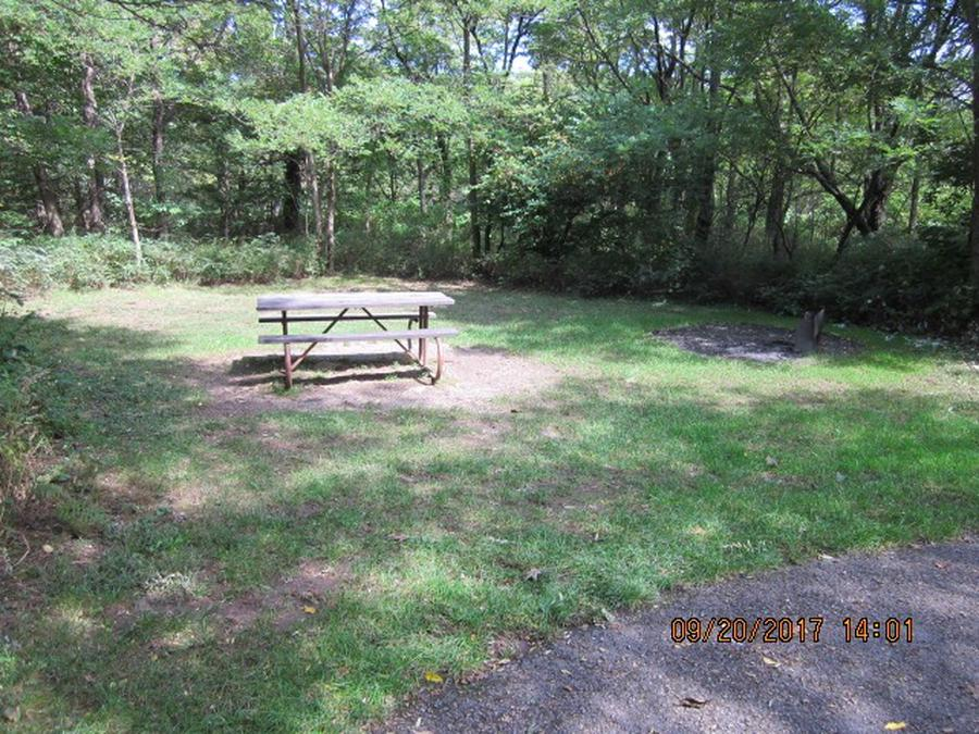 Loft Mountain Campground - Site E156