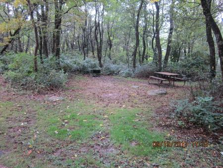 Loft Mountain Campground - Site F161
