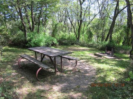Loft Mountain Campground - Site F167