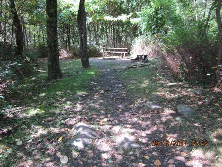 Loft Mountain Campground - Site F168