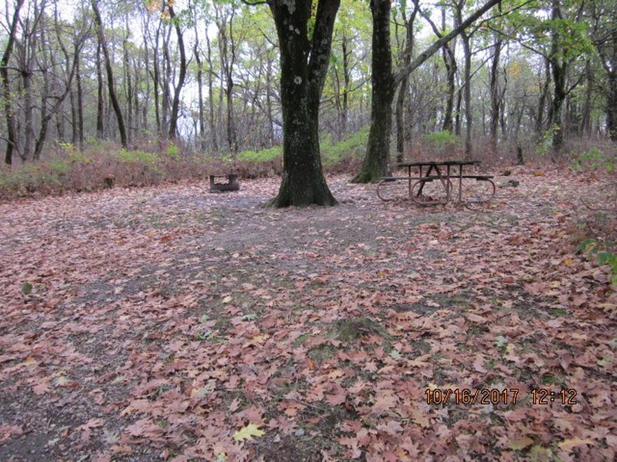 Loft Mountain Campground - Site G182