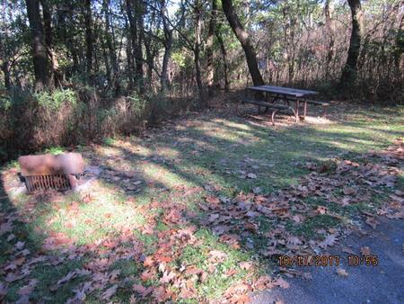 Loft Mountain Campground - Site G183