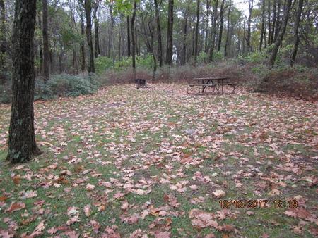 Loft Mountain Campground - Site G184