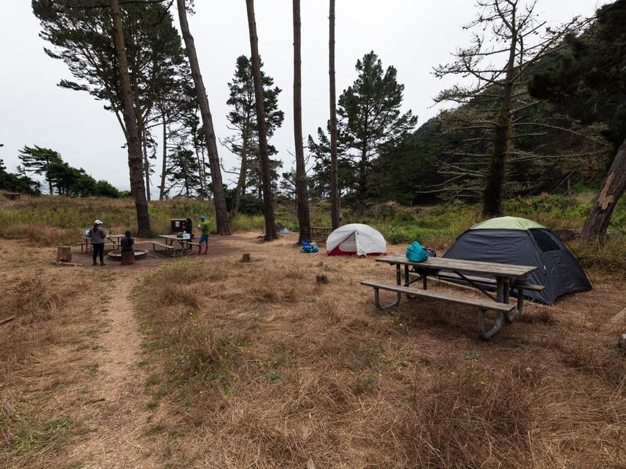 Two tents sit behind a picnic bench. Several campers gather around a campfire ring. Pines stand overhead.