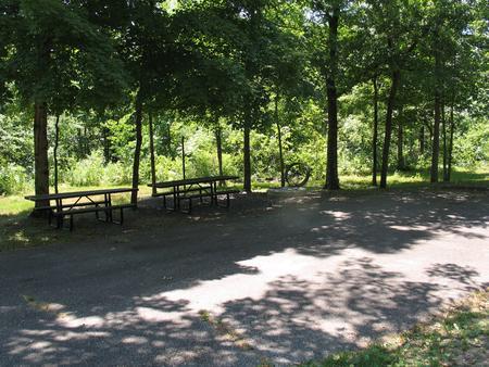 Double campsite 34 showing double parking spur, picnic tables,lantern post and fire ringDouble campsite 34