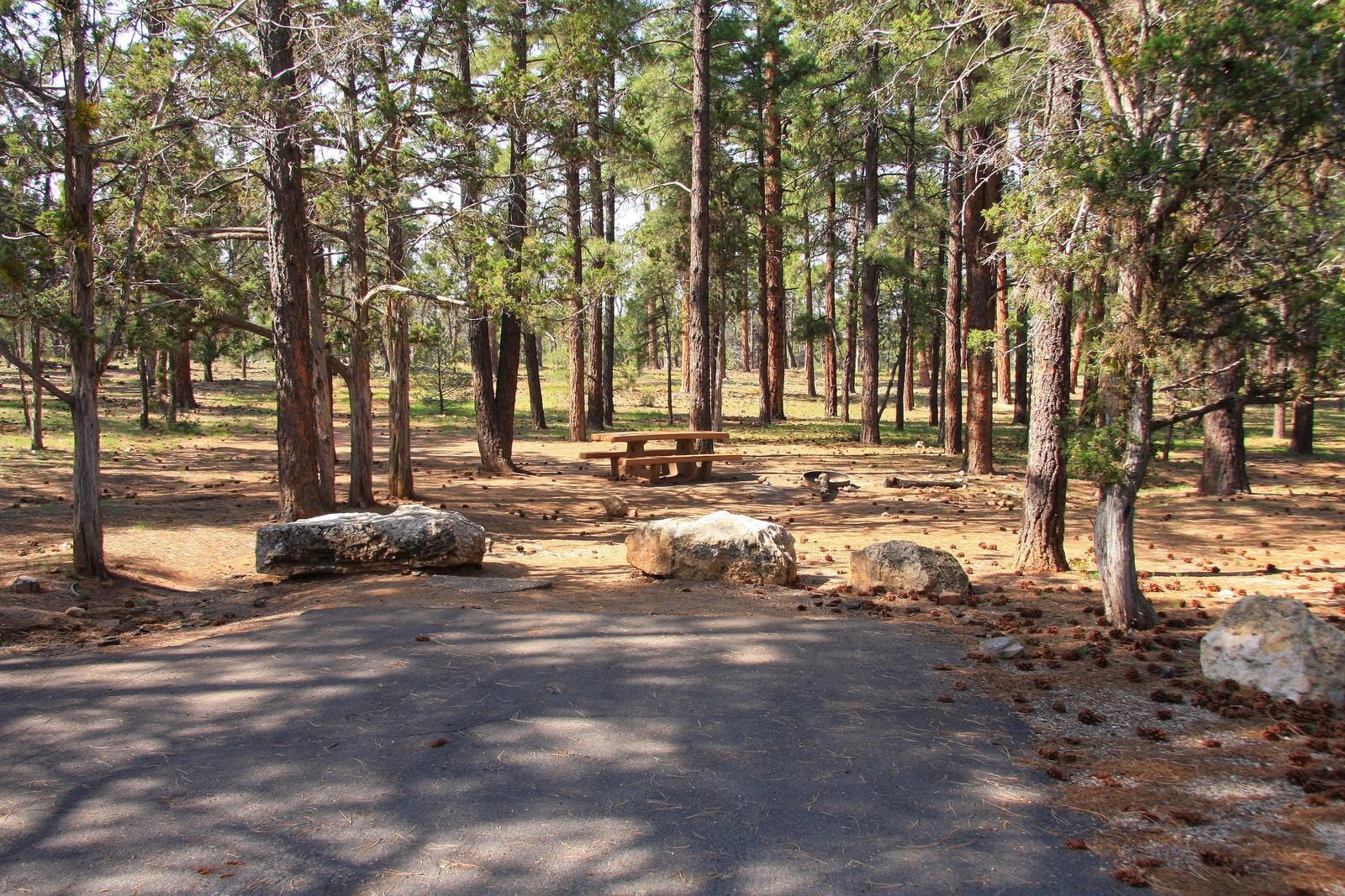 Picnic table, fire pit, and parking spot, Mather CampgroundPicnic table, fire pit, and parking spot for Juniper Loop 146, Mather Campground
