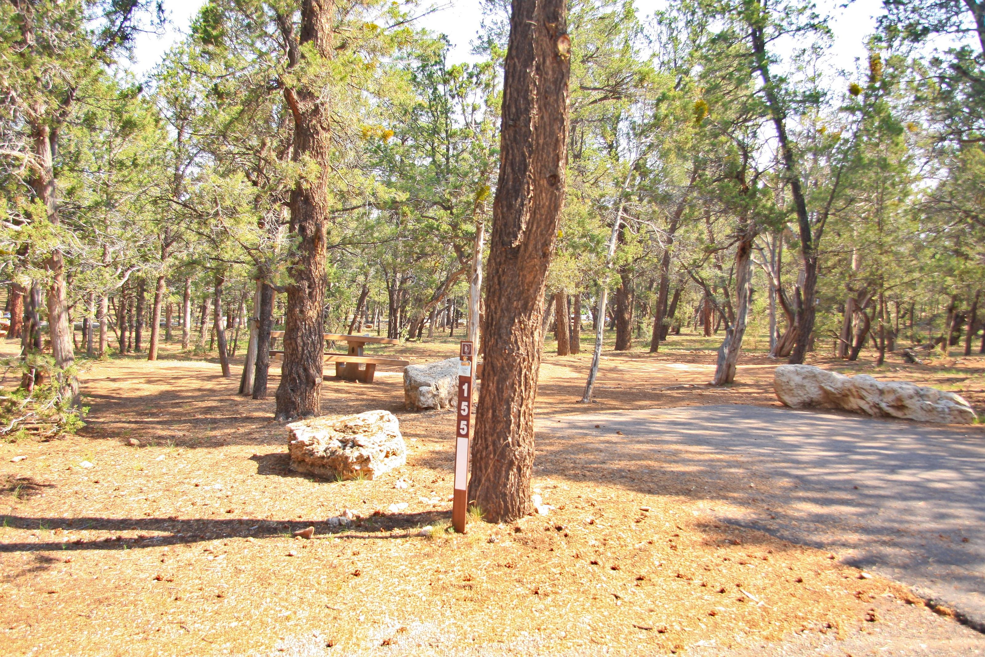 Picnic table and parking spot, Mather CampgroundPicnic table parking spot for Juniper Loop 155, Mather Campground