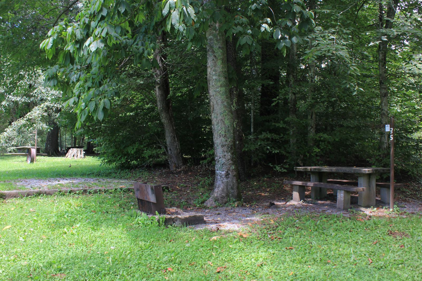 B Loop Site 35 - Tent Nonelectric