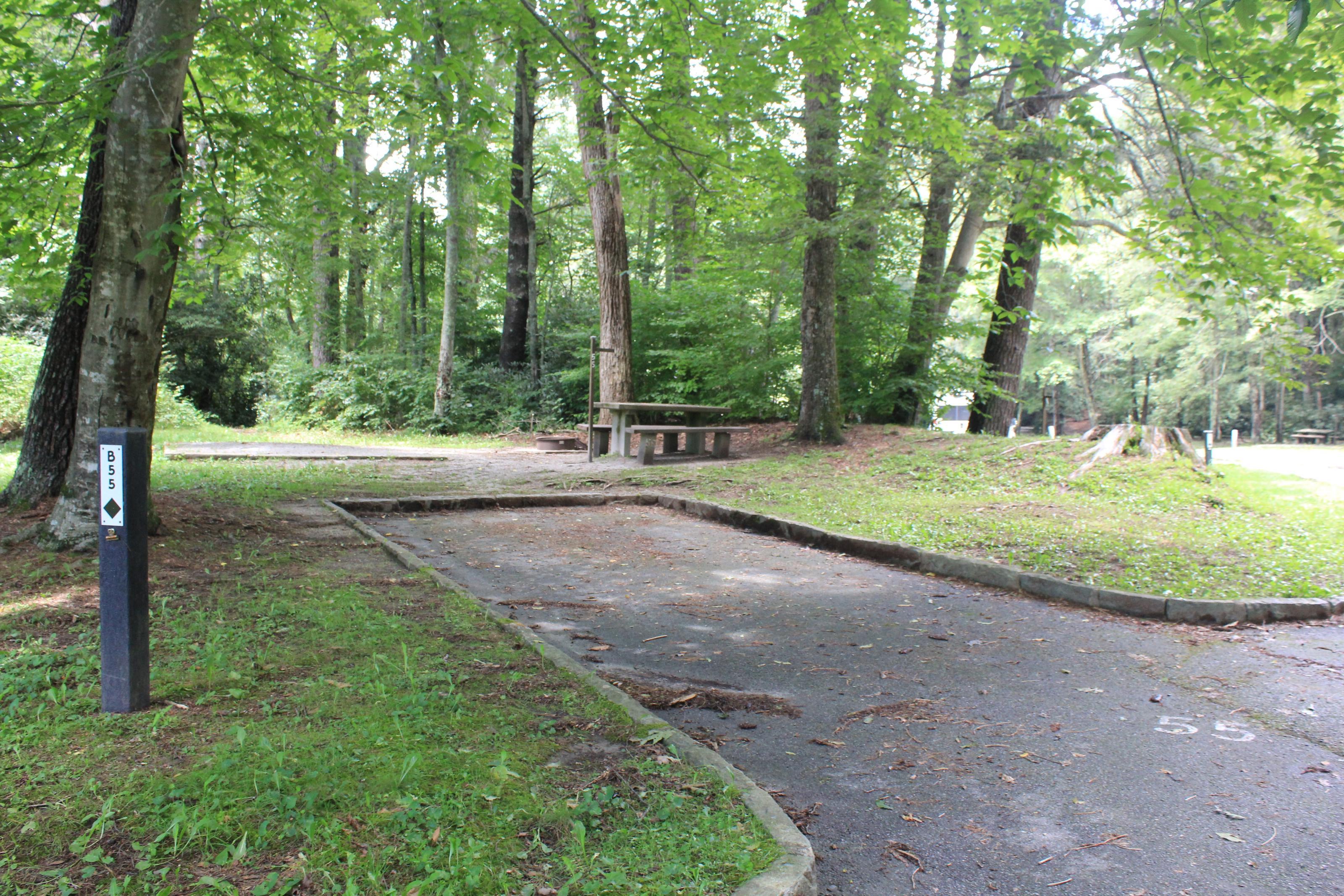 B Loop Site 55 - Tent Nonelectric