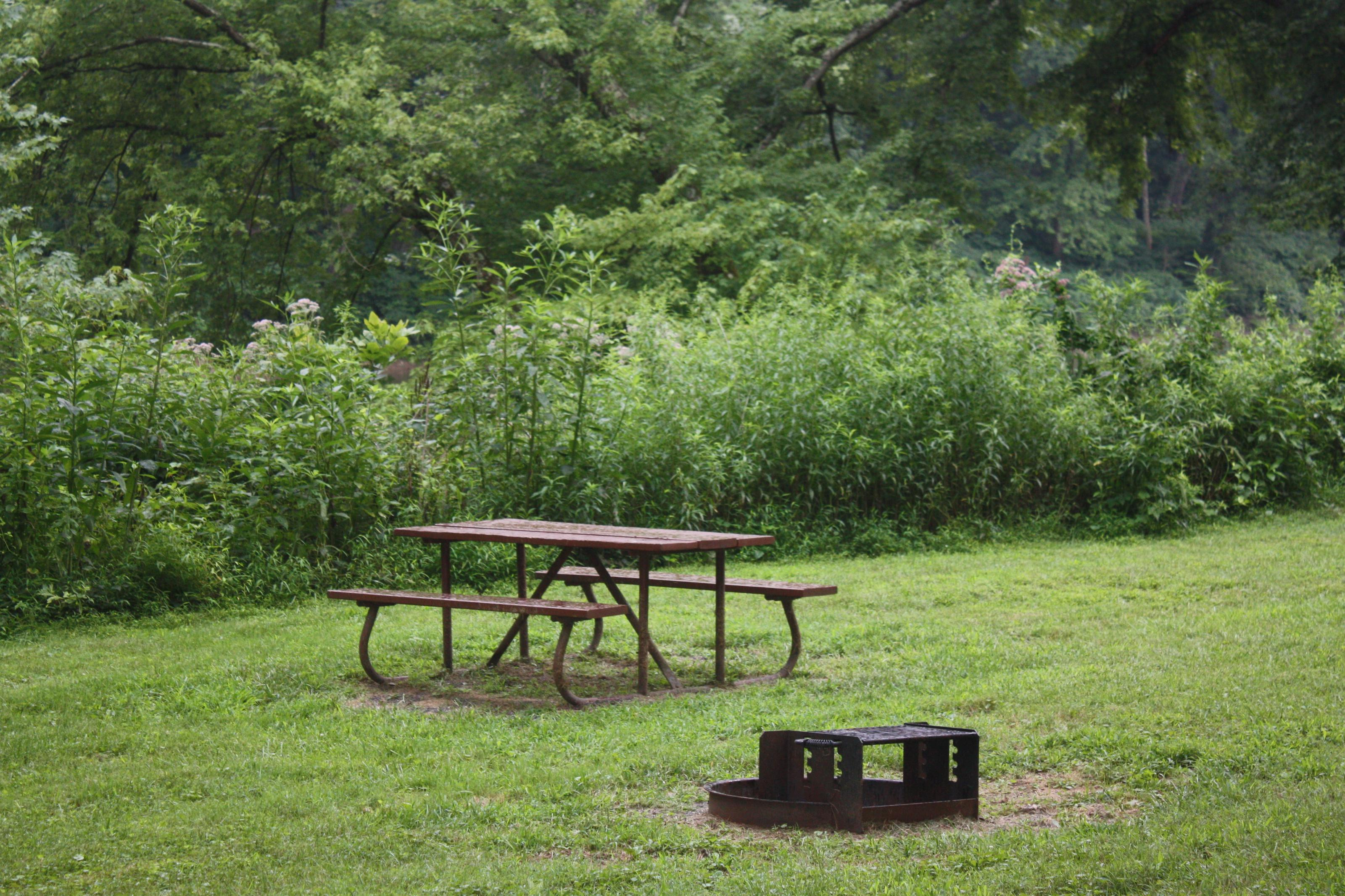 Campsite with picnic table and fire ring