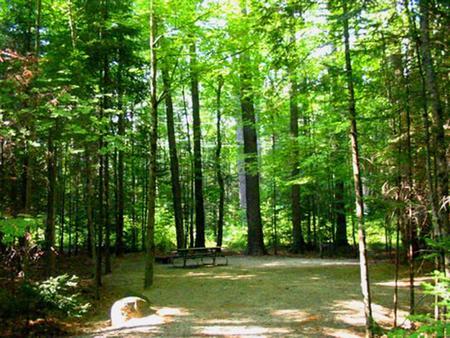 CampsiteCampsite 3