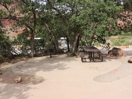 Big Bend Group Site B picnic table underneath shrub oak.Big Bend Group Site B picnic table underneath shrub oak.
