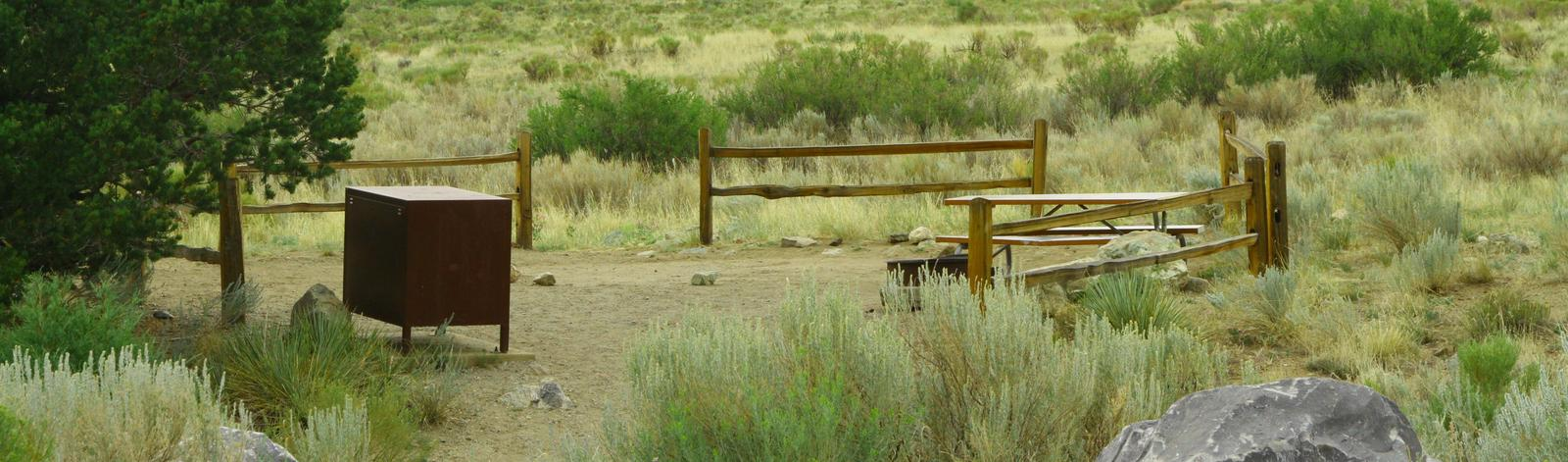 Site 21, Pinon Flats Campground