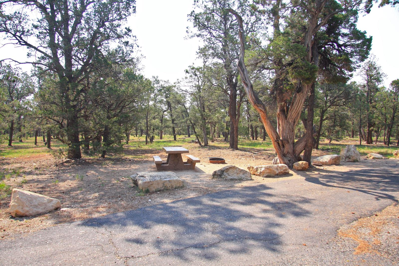 Picnic table, fire pit, and parking spot, Mather CampgroundPicnic table, fire pit, and parking spot for Juniper Loop 172, Mather Campground