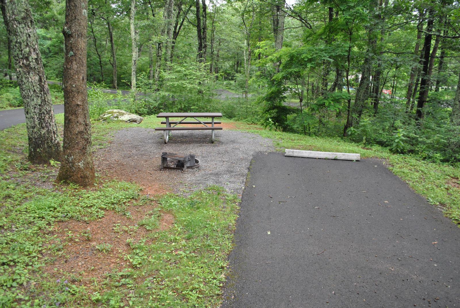 Mathews Arm Campground - Site B117