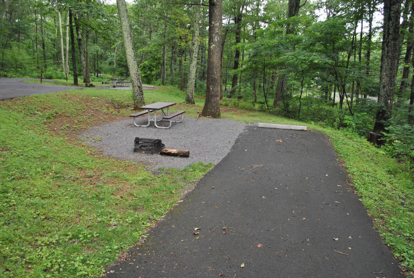 Mathews Arm Campground - Site B119