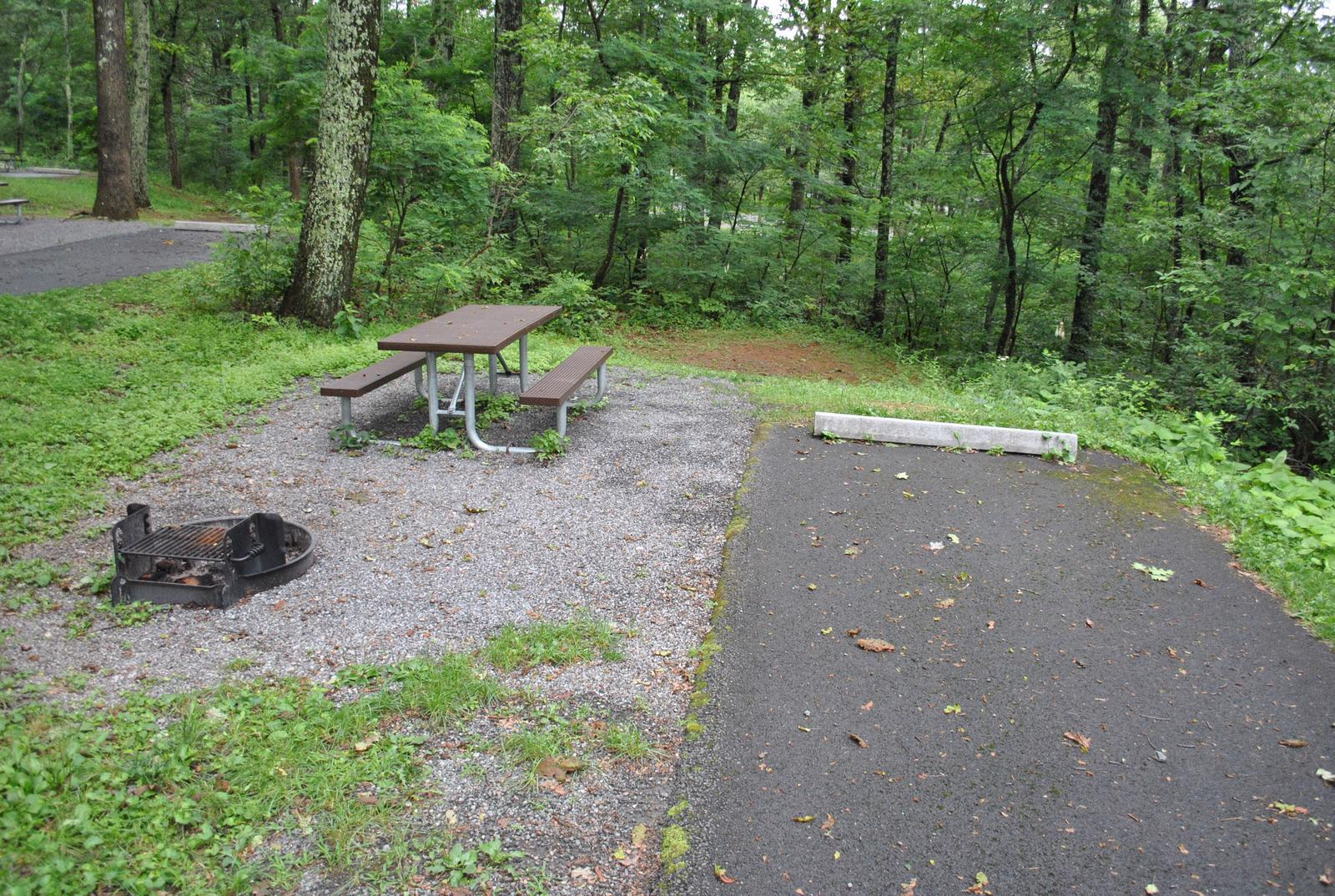 Mathews Arm Campground - Site B120