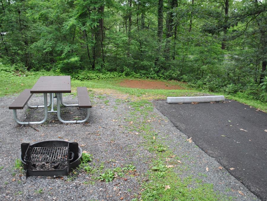 Mathews Arm Campground - Site B121