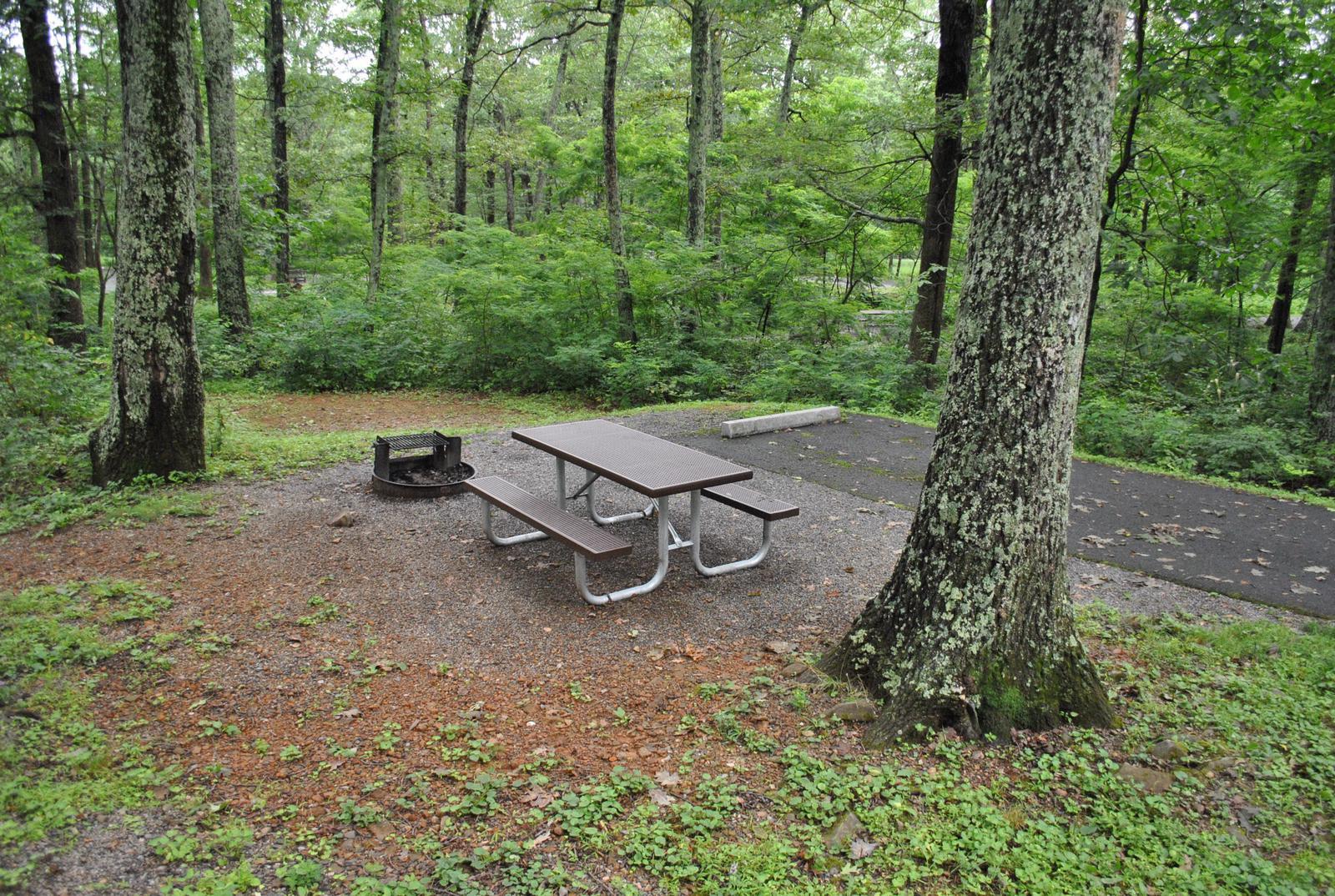 Mathews Arm Campground - Site B122