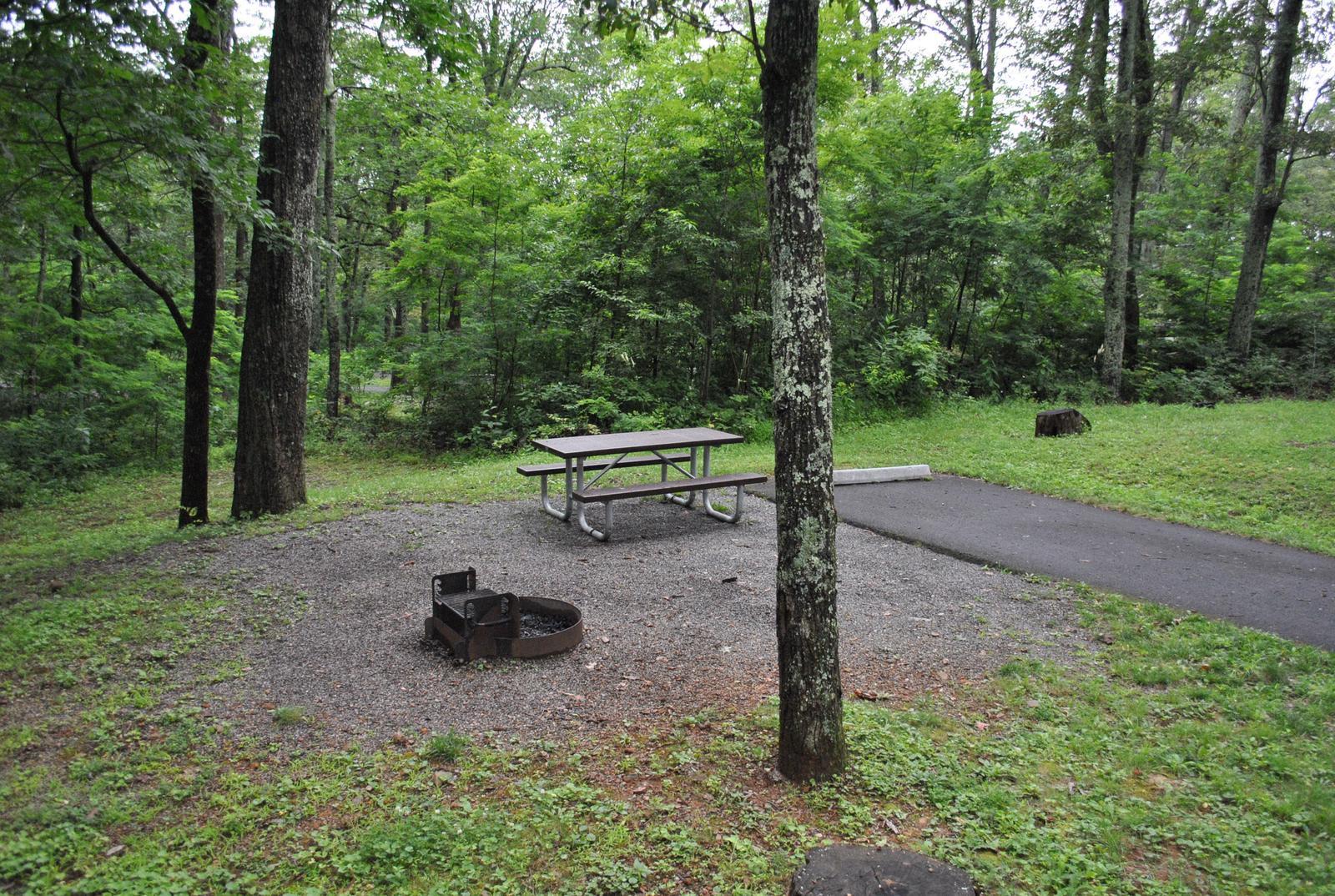 Mathews Arm Campground - Site B124