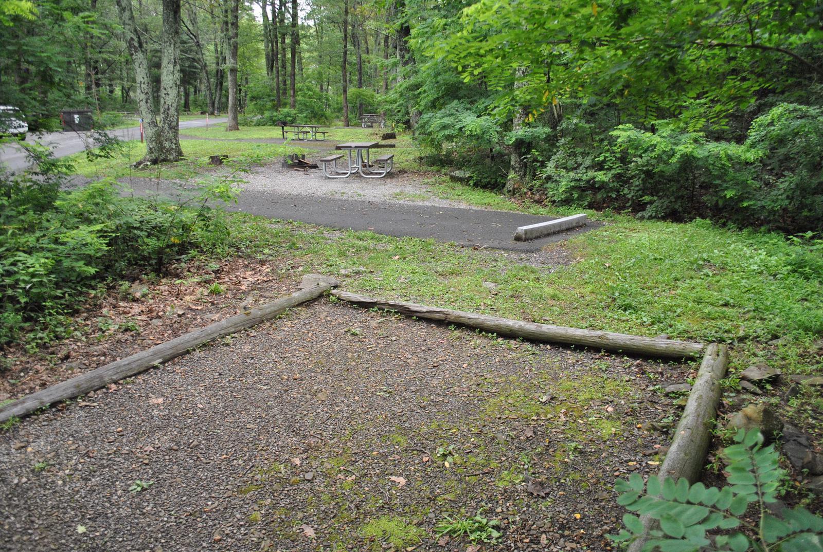 Mathews Arm Campground - Site B125