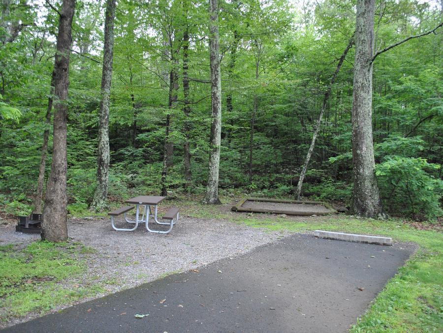 Mathews Arm Campground - Site B128