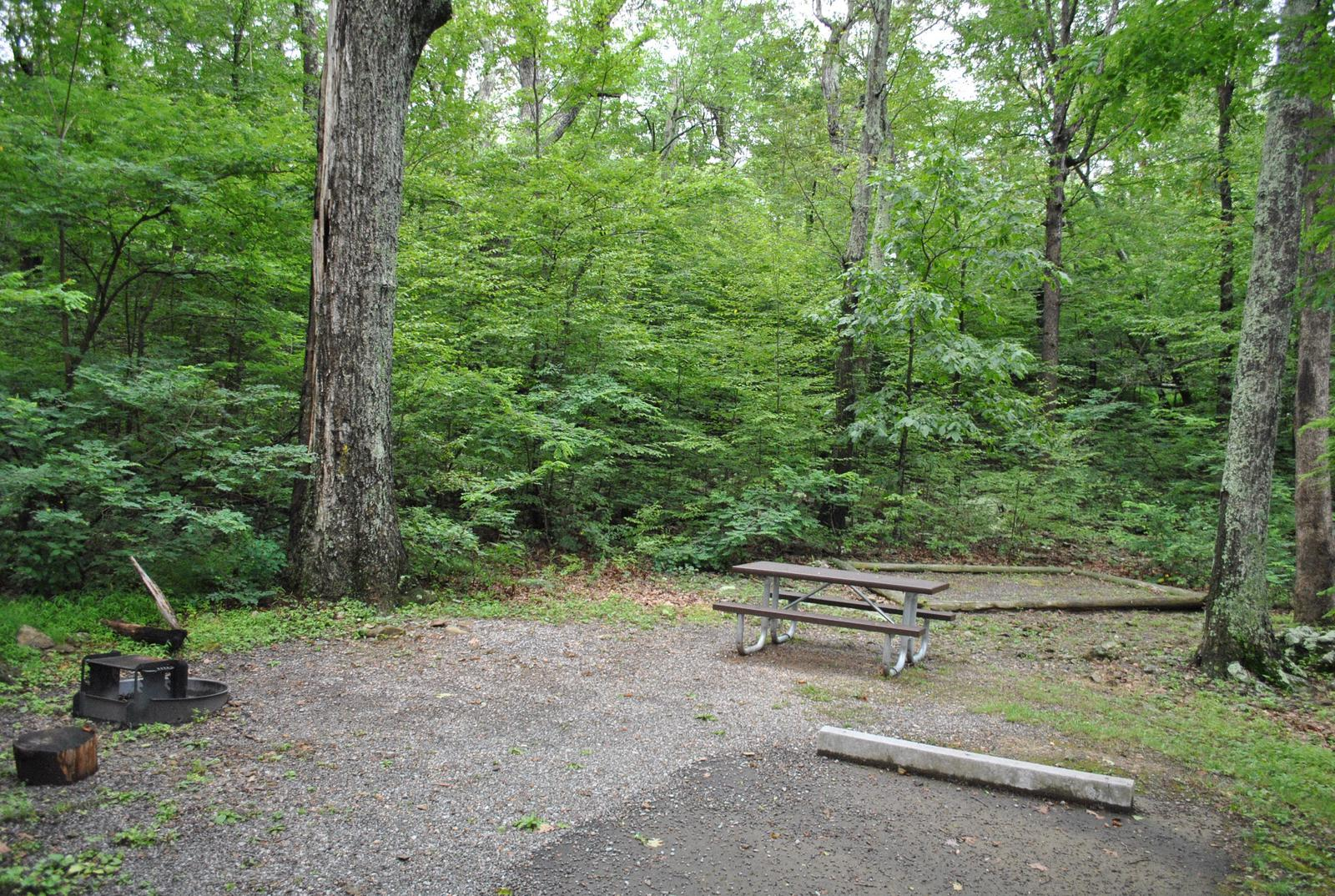 Mathews Arm Campground - Site B130
