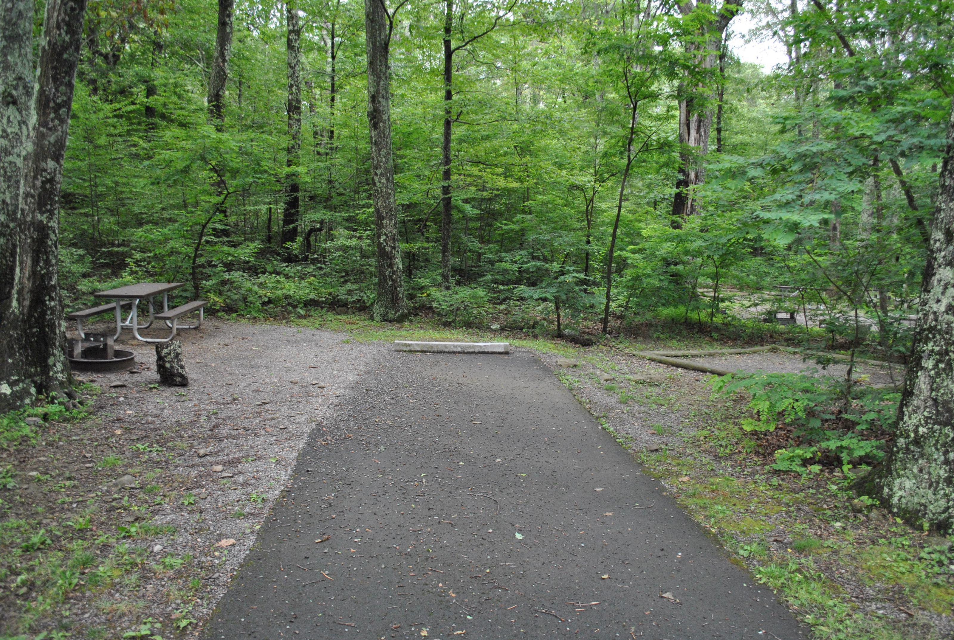 Mathews Arm Campground - Site B131