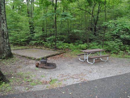 Mathews Arm Campground - Site B133
