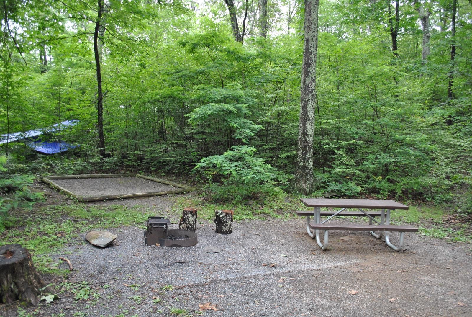 Mathews Arm Campground - Site B135