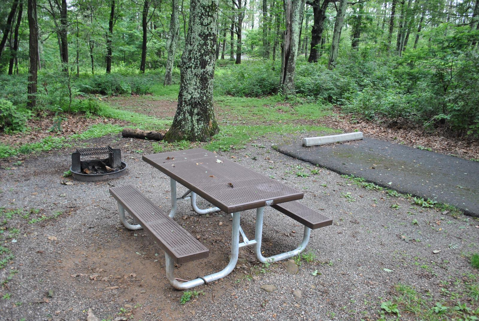Mathews Arm Campground - Site B138