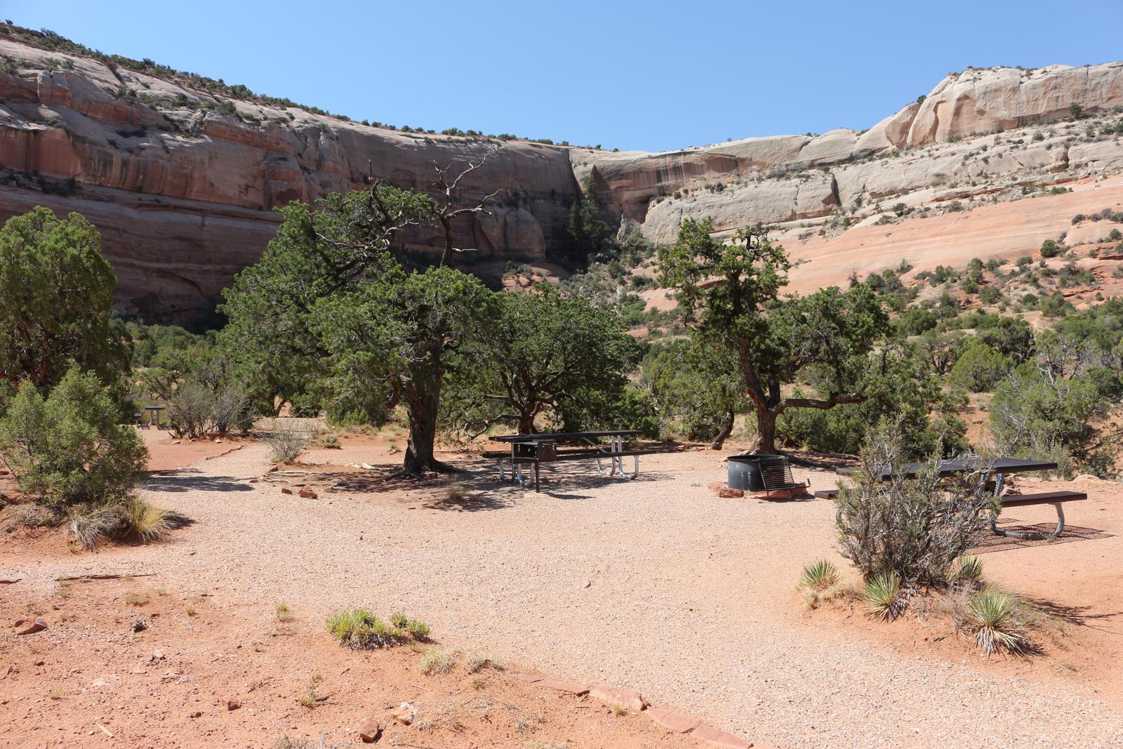 Windwhistle Group Site camping area with picnic tables and a fire pit. Tall, slick rock walls line the horizon.