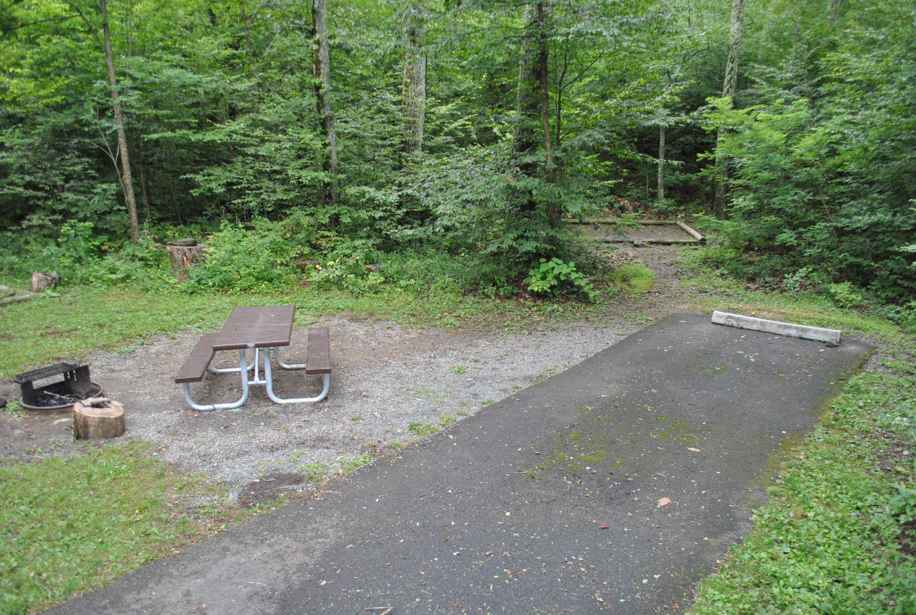 Mathews Arm Campground - Site B139