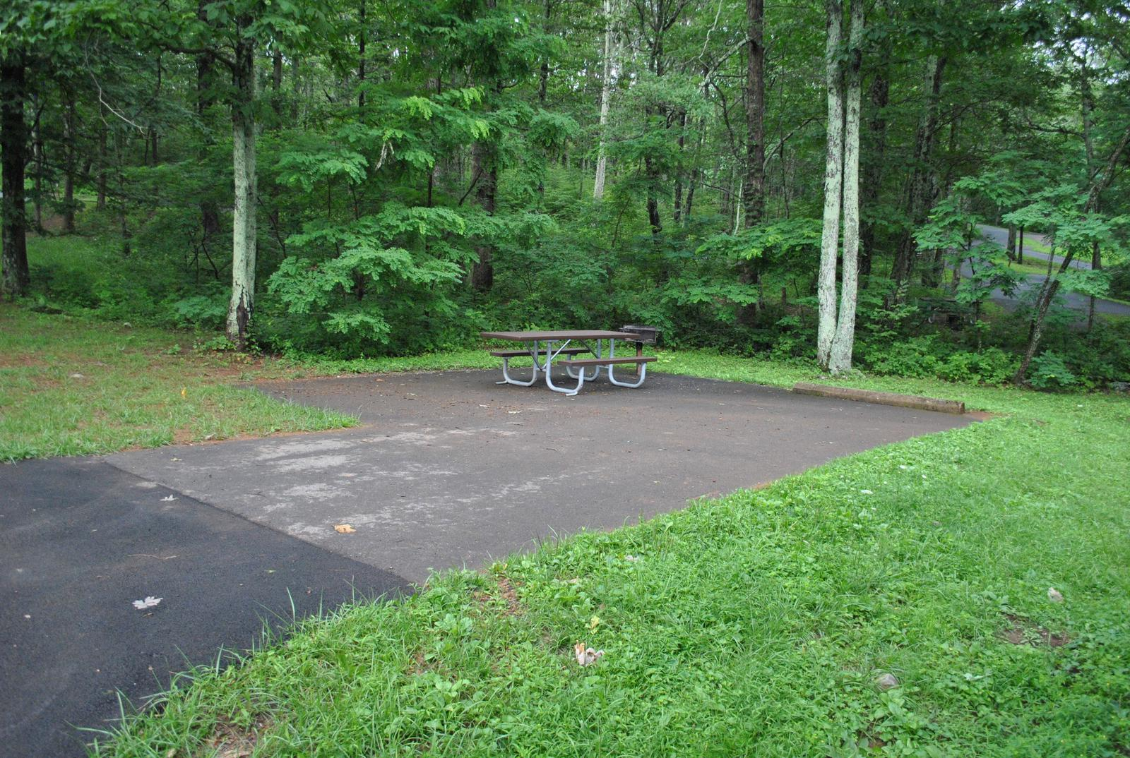 Mathews Arm Campground - Site C144