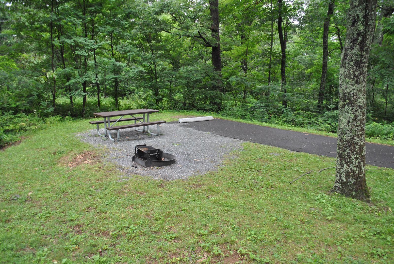 Mathews Arm Campground - Site C149