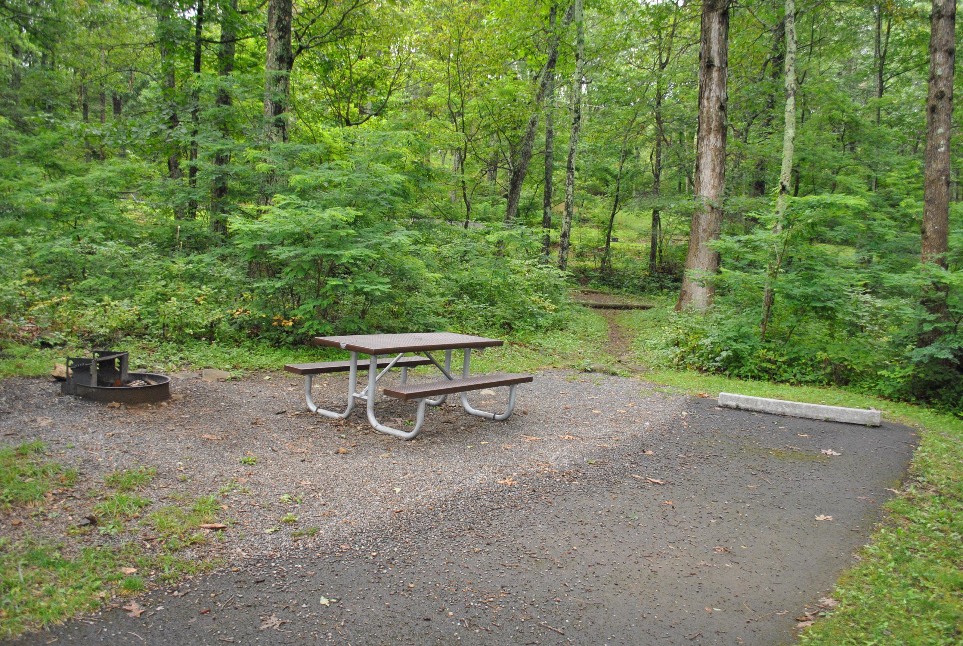 Mathews Arm Campground - Site C150