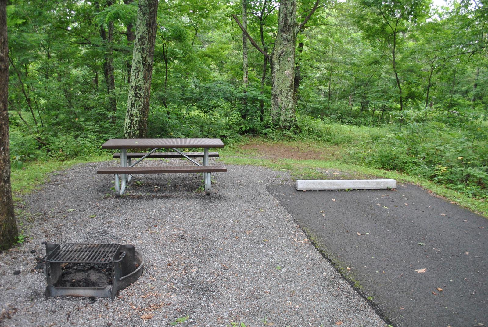 Mathews Arm Campground - Site C151