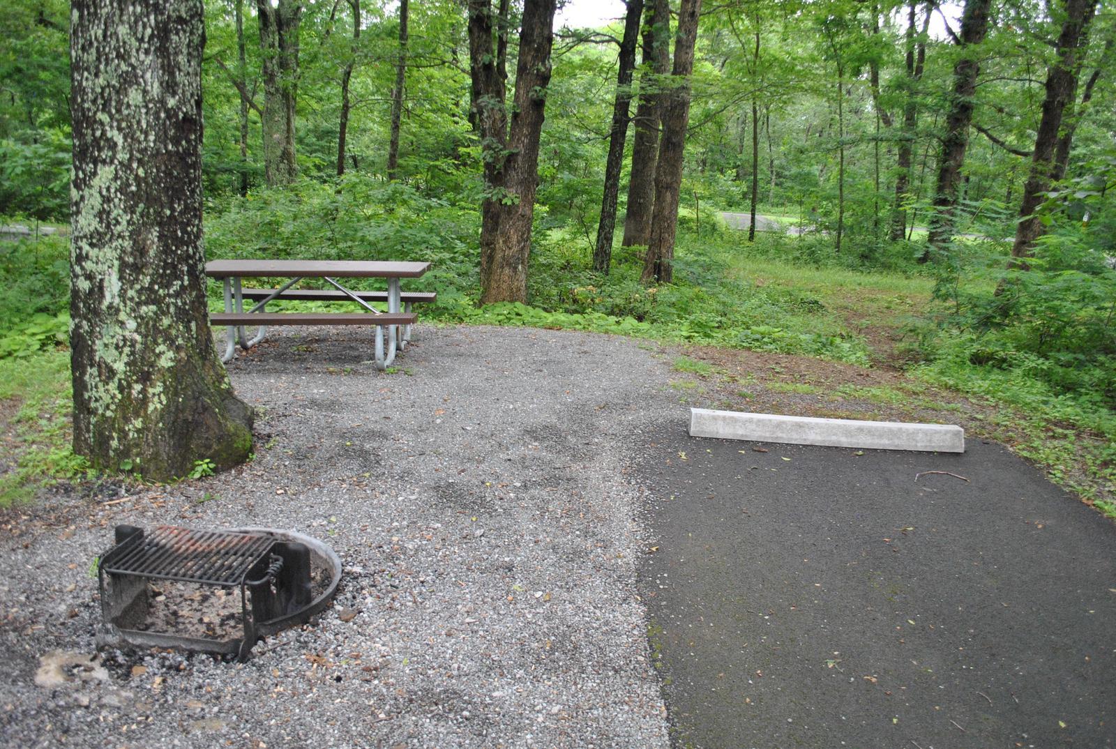 Mathews Arm Campground - Site C153