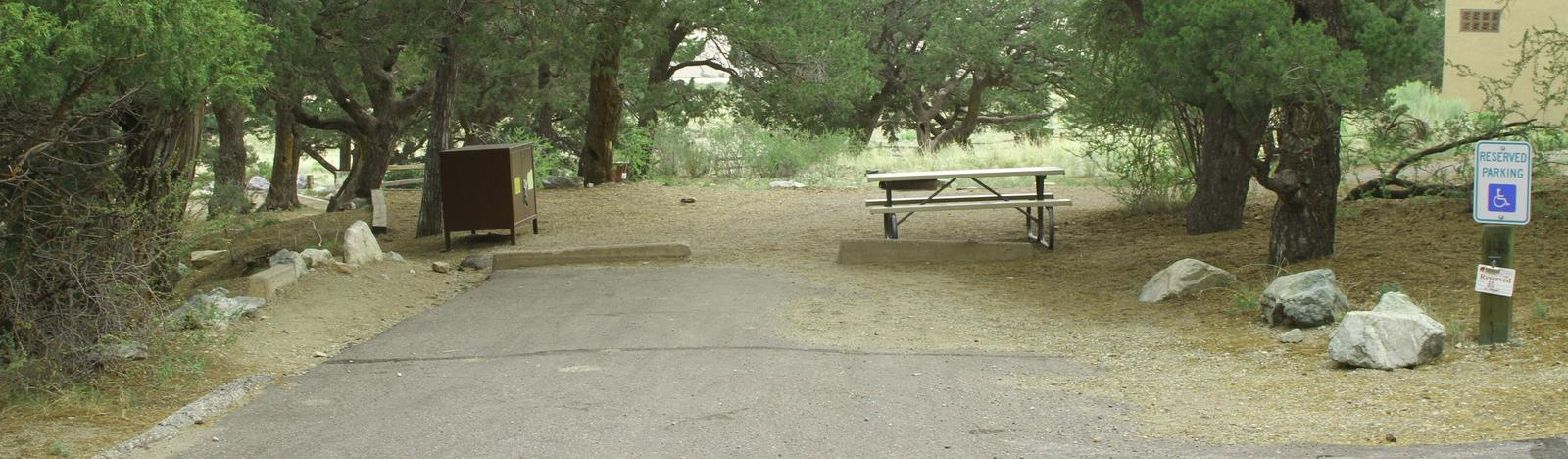 Site 14, Pinon Flats Campground