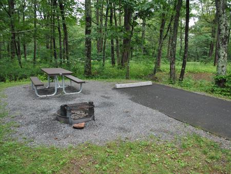 Mathews Arm Campground - Site C155
