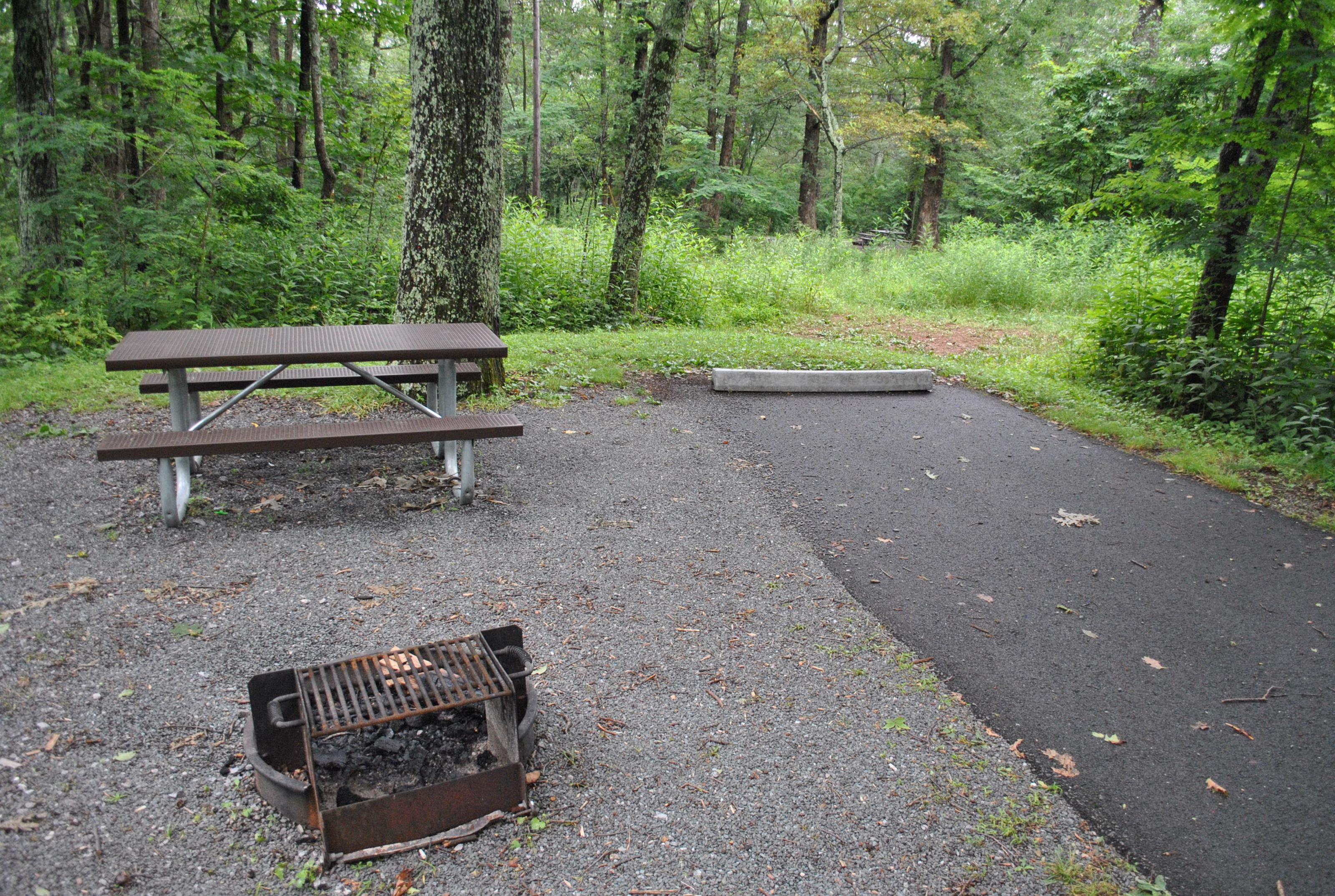 Mathews Arm Campground - Site C157