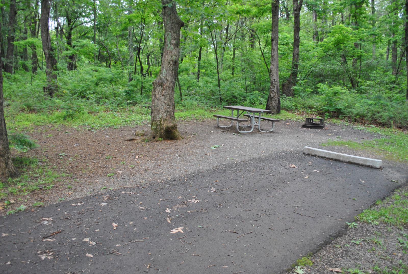 Mathews Arm Campground - Site C162