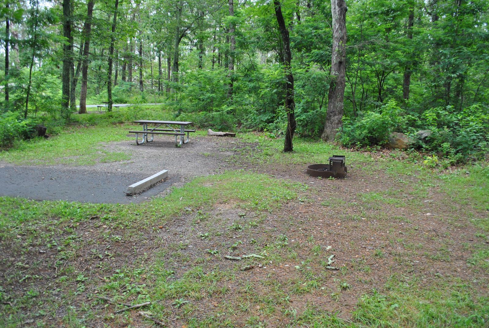 Mathews Arm Campground - Site C163