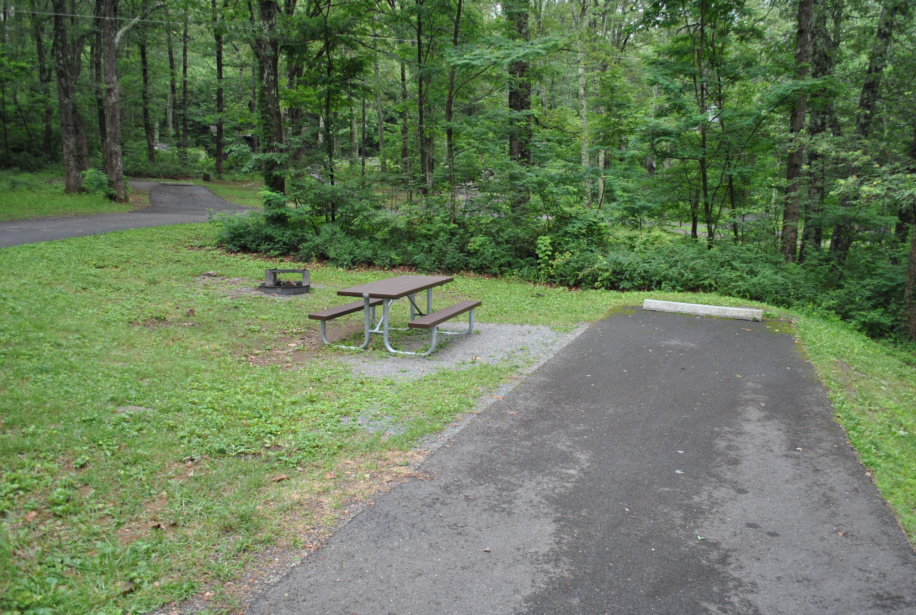 Mathews Arm Campground - Site C164