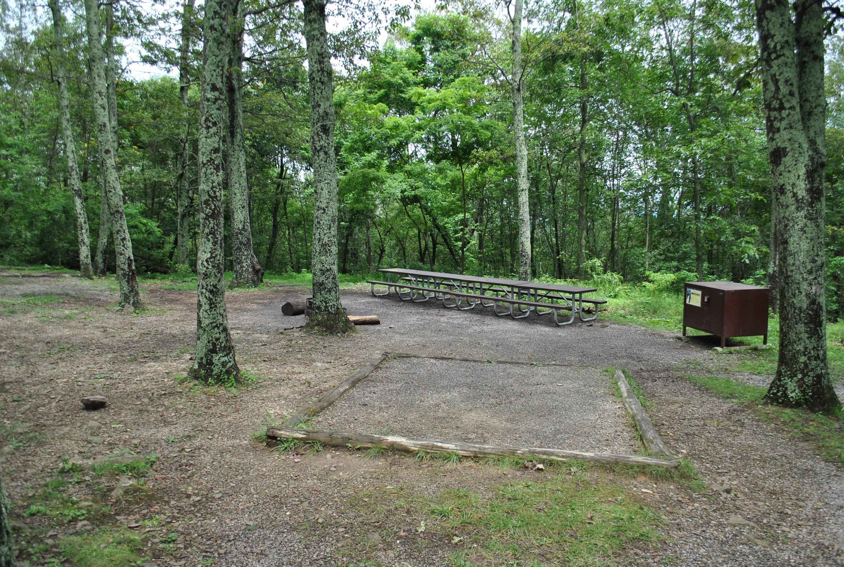 Mathews Arm Campground - Site D166