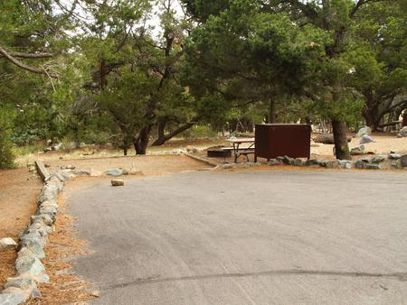 Site #11, Pinon Flats Campground