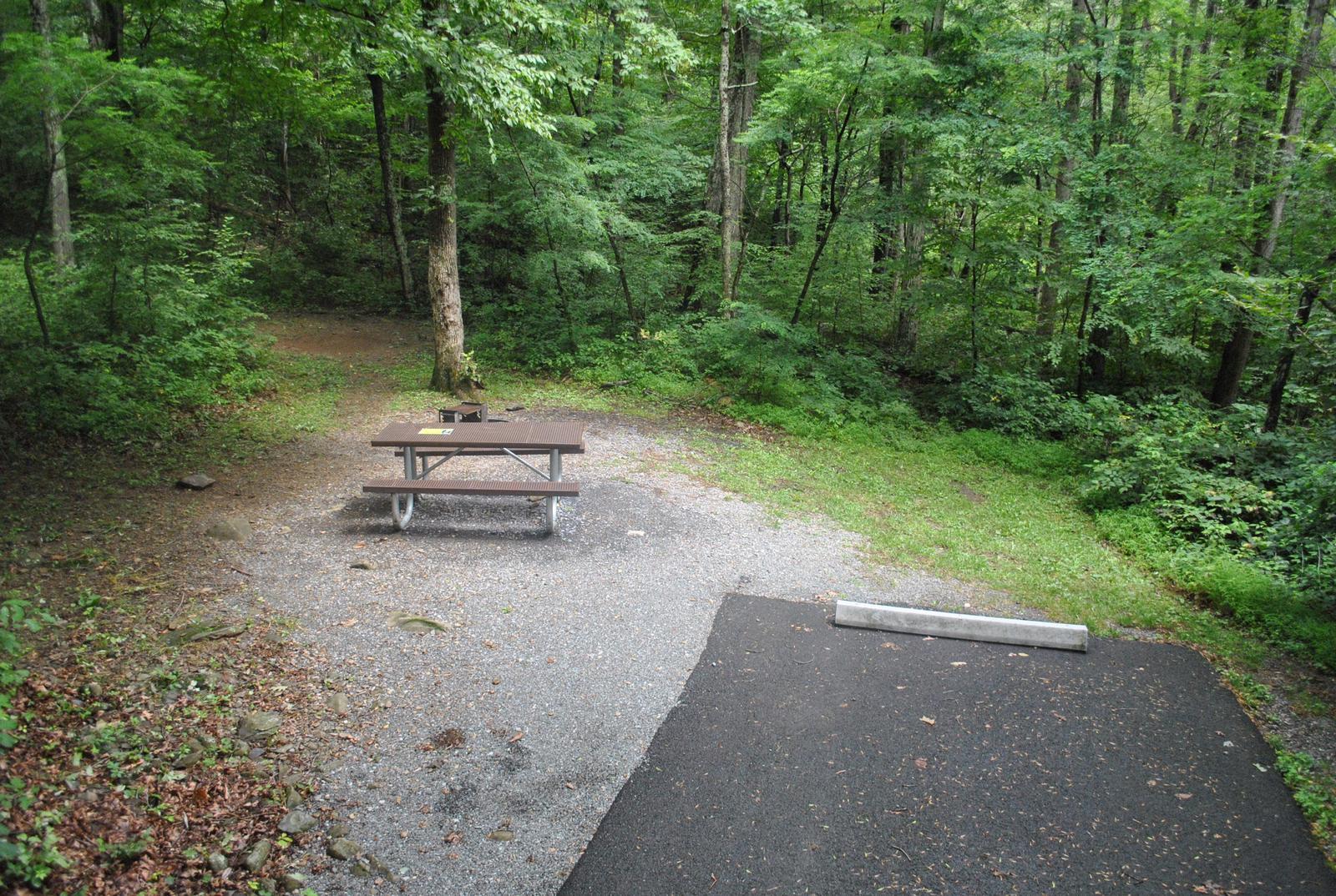 Mathews Arm Campground - Site A001