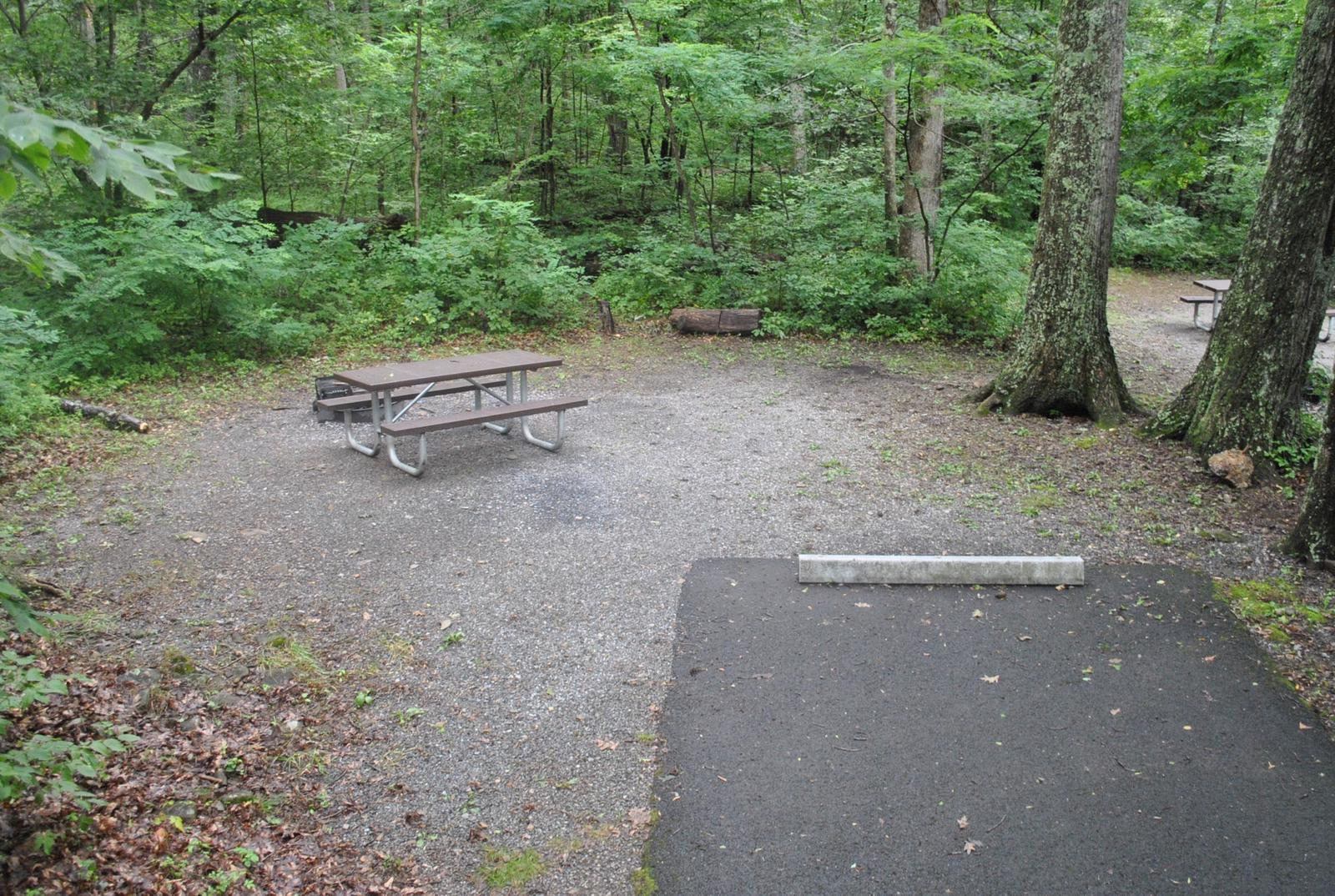 Mathews Arm Campground – Site A005