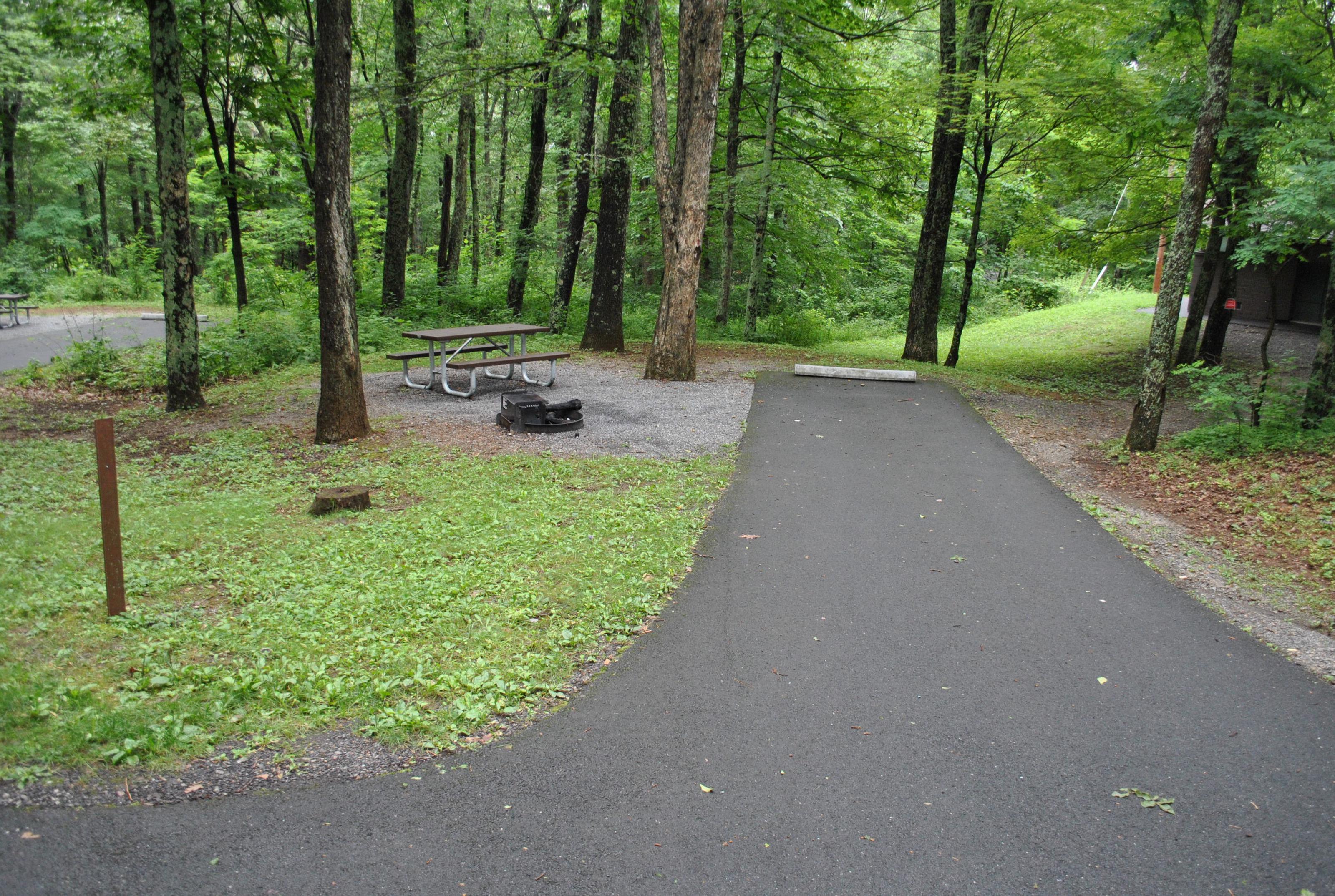 Mathews Arm Campground – Site A006